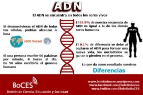 ADN 2