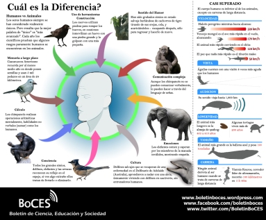 Diferencias Animal vs Humanos