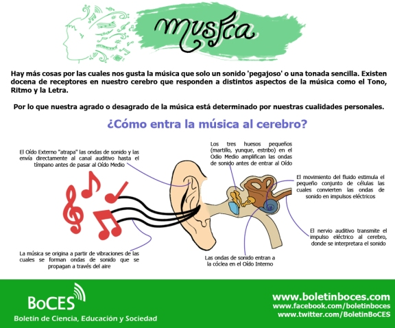 Musica 1-1